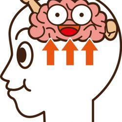 眠れる運動脳のスイッチをオン:運動の効果が上がる方法とは?