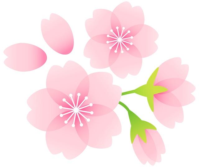 大掃除は年末だけじゃない。春に大掃除が最適な理由とは?